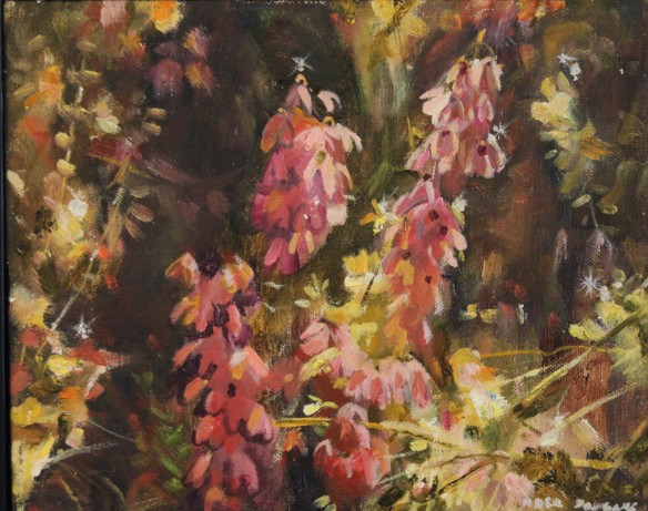 Bush Study, Neil Douglas oil on canvas