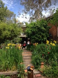 Studio Garden with Iris